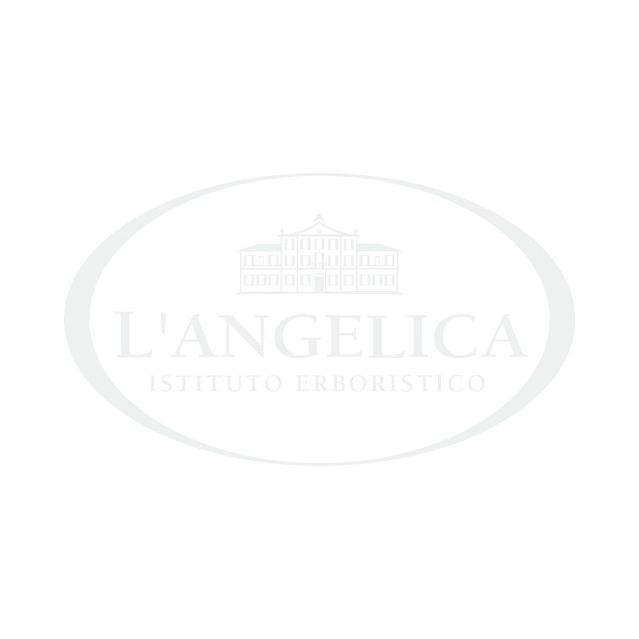 Infuso biologico al Mango e Melograno