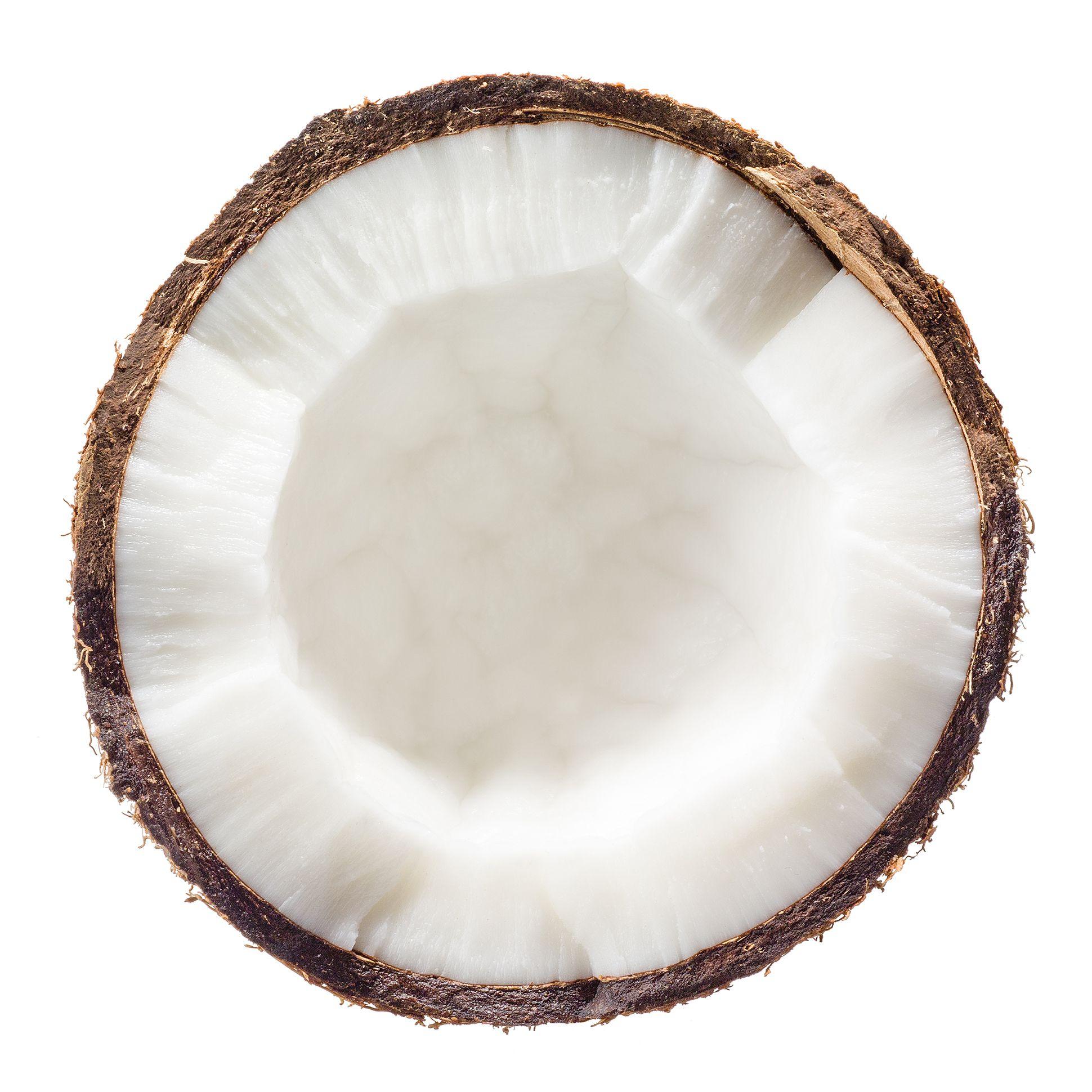 Cocco